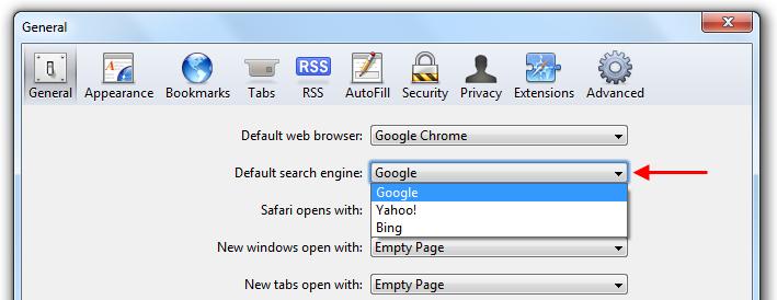 Safari choose search engine